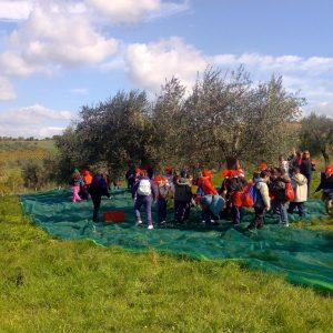 fattoria didattica4